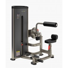 Брюшной пресс-мышцы спины Insight Fitness DA009D