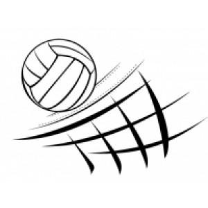 Оборудование для волейбола по оптовым ценам с доставкой в Казани