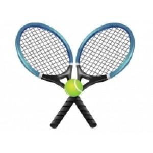 Товары для большого тенниса по оптовым ценам с доставкой в Казани
