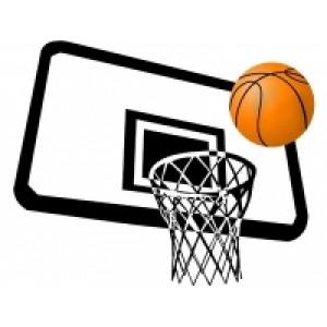 Баскетбол купить по низким ценам в Raduga-Sporta.ru