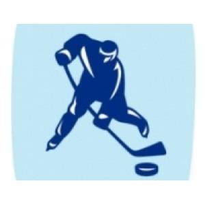 Купить хоккейное снаряжение и товары для игры в хоккей по оптовым ценам в Казани